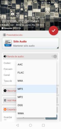 formatos audio format factory