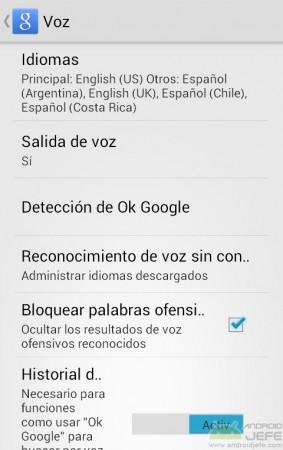 varios idiomas google voz