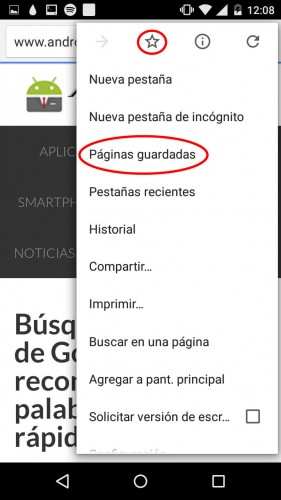 guardar paginas google chrome dev android