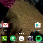 5 aplicaciones para reproducir vídeos en el fondo de pantalla (Video Wallpaper)