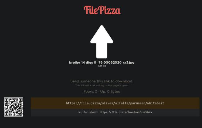 file.pizza